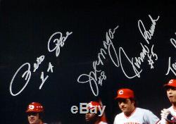 Big Red Machine Autographié Encadrée 16x20 Photo 8 Sigs Banc Rose Psa / Adn 155027