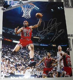 Dennis Rodman Signé 16x20 Photo Psa/adn Nba Bulls Basketball Photo Autographe
