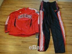 Derrick Rose # 1 Mvp Psa / Adn Signé Bulls Adidas Chicago Warm Up Costume Autograph